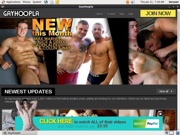 Gay Hoopla Membership