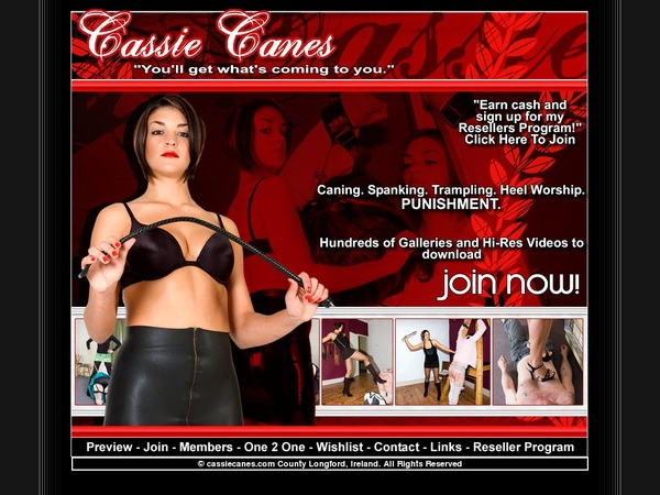 Login For Cassie Canes