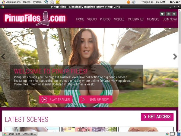 How To Get Free Pinupfiles Account